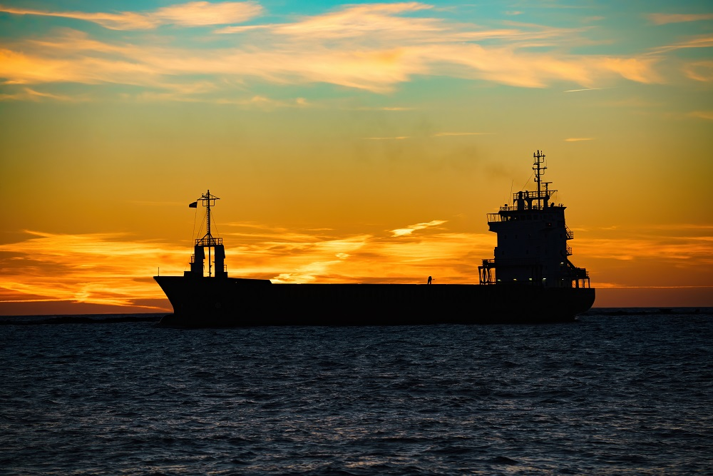 GLOBAL: Over 100 shipping companies back mandatory speed reduction